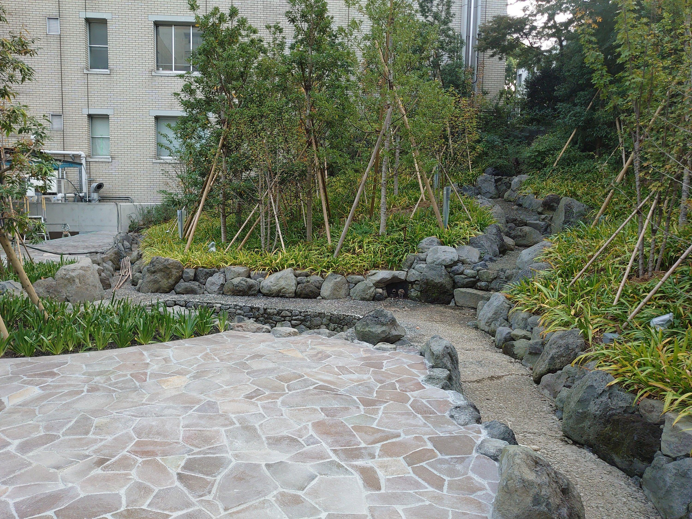H大学大内山庭園